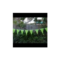 Bunting Flag Lime Green 2.8m