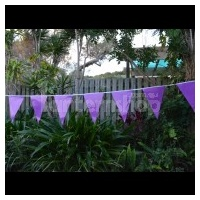 Bunting Flag Purple 2.8m - Ea